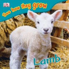 Lamb (See How They Grow).pdf