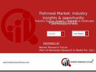 Fishmeal Market.pptx